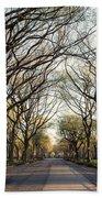 Central Park Nyc Beach Towel