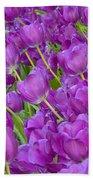 Central Park Spring-purple Tulips Beach Towel