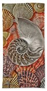 Chambered Nautilus Shell Abstract Beach Towel