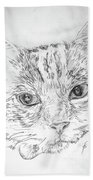 Chat Somnolant Resting Cat Beach Towel