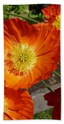 Cheerful Orange Flowers  Beach Towel