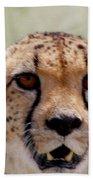 Cheetah No.1 Beach Towel