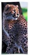 Cheetah Cub Beach Towel