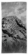 Cheetah Hunting Deer  Beach Towel