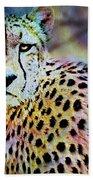 Cheetah Viii Beach Sheet
