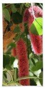 Chenille Caterpillar Plant Beach Towel