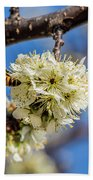 Pear Blossom And Bee Beach Towel