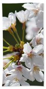 Cherry Blossom Cluster Beach Towel