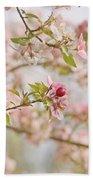 Cherry Blossom Delight Beach Towel by Kim Hojnacki