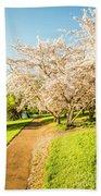 Cherry Blossom Lane Beach Towel