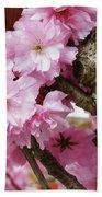 Cherry Blossom Tree Beach Sheet