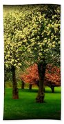 Cherry Blossom Trees Beach Towel