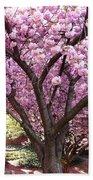 Cherry Blossom Wonder Beach Sheet