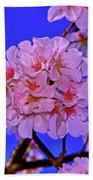 Cherry Blossoms 004 Beach Towel