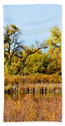 Cherry Creek Pond In Autumn Beach Towel