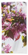 Cherry Tree Flowers Beach Sheet