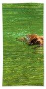 Chesapeake Bay Retriever Swimming Beach Towel