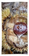 Chestnut Beach Towel