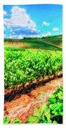 Chianti Vineyard In Tuscany Beach Towel
