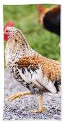 Chickens In Bird In Hand Beach Towel
