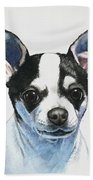 Chihuahua Black Spots With White Beach Towel