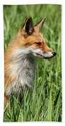 Chillin Vixen  Beach Towel