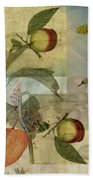 Chinese Lantern Surrounded Beach Towel