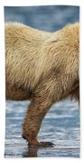 Chinitna Bay Brown Bear Beach Towel