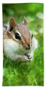 Chipmunk Saving Seeds Beach Towel