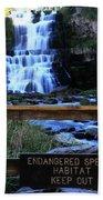 Chittenango Falls State Park Beach Towel