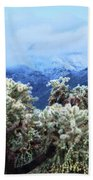 Cholla Cactus And Superstition Mountains Beach Towel