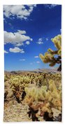 Cholla Cactus Garden In Joshua Tree National Park Beach Towel