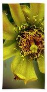 Cholla Flower H1848 Beach Towel