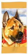 Chow Shepherd Mix Beach Towel