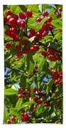 Christmas Berries Beach Towel