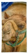 Christmas Camel On Call Beach Towel