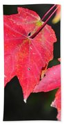 Christmas Leafs Beach Towel