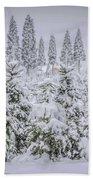 Christmas Tree Farm Beach Towel