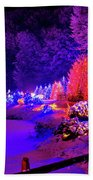 Christmas Trees Row And Frozen Lake View Beach Towel