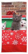 Christmas With Kittens Beach Towel
