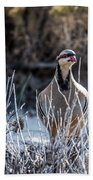 Chukar Beach Towel