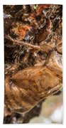 Cicada Exoskeleton Side Beach Towel