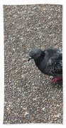 City Bird Beach Towel