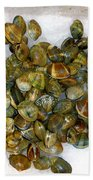 Clams In The Fish Market Beach Towel
