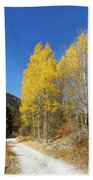 Claree Valley In Autumn - 11 - French Alps Beach Towel