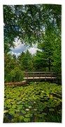 Clark Gardens Botanical Park Beach Towel