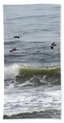 Classic Brown Pelicans Beach Towel
