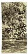 Classic Southern Beauty - Evergreen Plantation -sepia Beach Towel