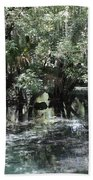 Clear Lithia Springs Beach Towel