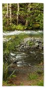 Clear Mountain Stream Beach Towel